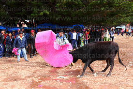 Spectators watch an amateur matador in action during a bullfight in the main square at festival in Caquiaviri, Bolivia