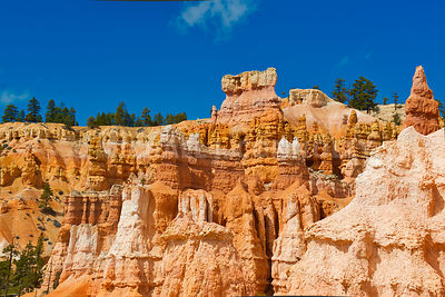 Canyon Walls And Trees- Bryce Canyon, Utah