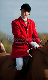 Cottesmore fox hounds