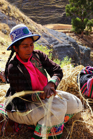 Woman weaving new ropes from grass to rebuild the bridge , Q'eswachaka , Canas province , Peru