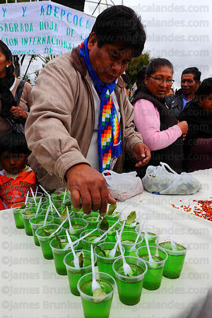 Man decorating pots of jelly made from coca leaf extract with coca leaves at trade fair promoting alternative products made from coca leaves , La Paz , Bolivia