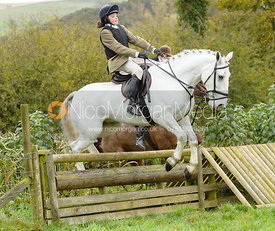jumping the hunt jump at Peakes Covert