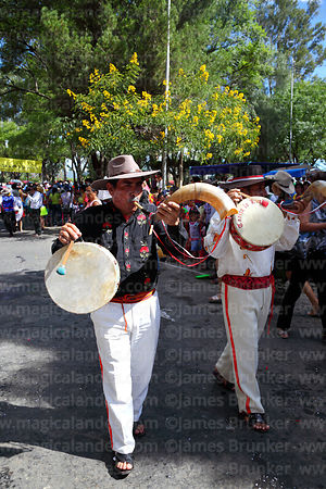 Erquero musicians playing erke (horn) and caja (drum) at carnival parade, Tarija, Bolivia