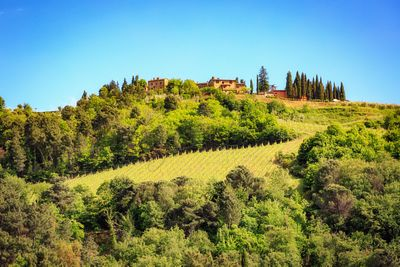House in The Hillside of Chianti Italy