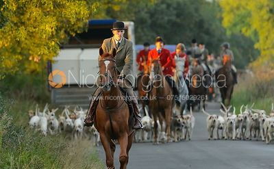 The Cottesmore Hunt at Furze Hill 29/8 photos
