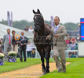 Murray Lamperd and UNDER THE CLOCKS - The first vets inspection (trot up),  Land Rover Burghley Horse Trials, 3rd September 2014.