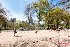 People playing volleyball at Central Park, New York city, USA