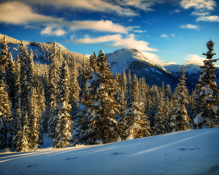 Winter in the Sawatch Range