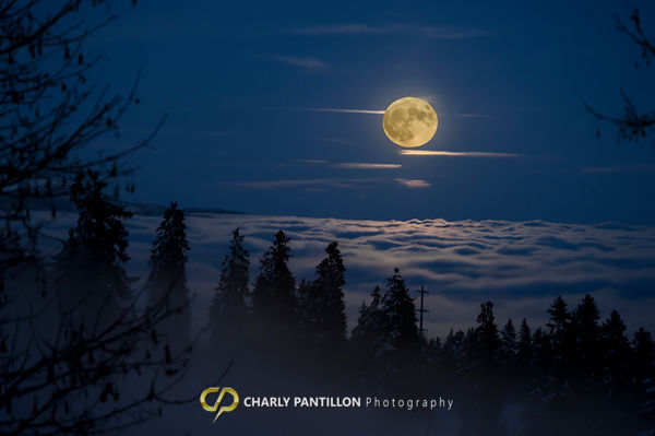 Super Moon of january 2016