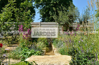 Jardin style champêtre : Olea europaea, Salvia nemorosa 'Caradonna', Penstemon spp,. Claustra en bois. Fontaine gabion. Paysagiste : Peter Reader, Hampton Court, Angleterre