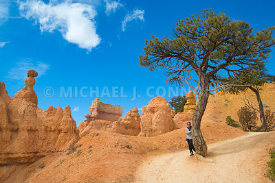 Hiker Near The Top- Bryce Canyon, Utah