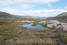 Upland bog habitat for breeding Greenshank, Strath Dionard NW Sutherland Scotland June