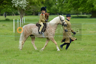 Class 16 - BSPS Heritage M&M Pretty Polly (RIHS) Lead Rein photos