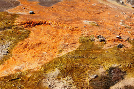 Detail of geyserite mineral deposits with colourful algae / thermophiles near geyser, El Tatio geyser field, Region II, Chile