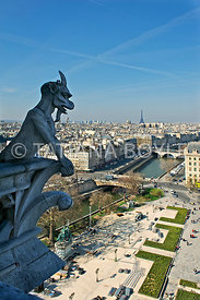 Chimera of Notre Dame