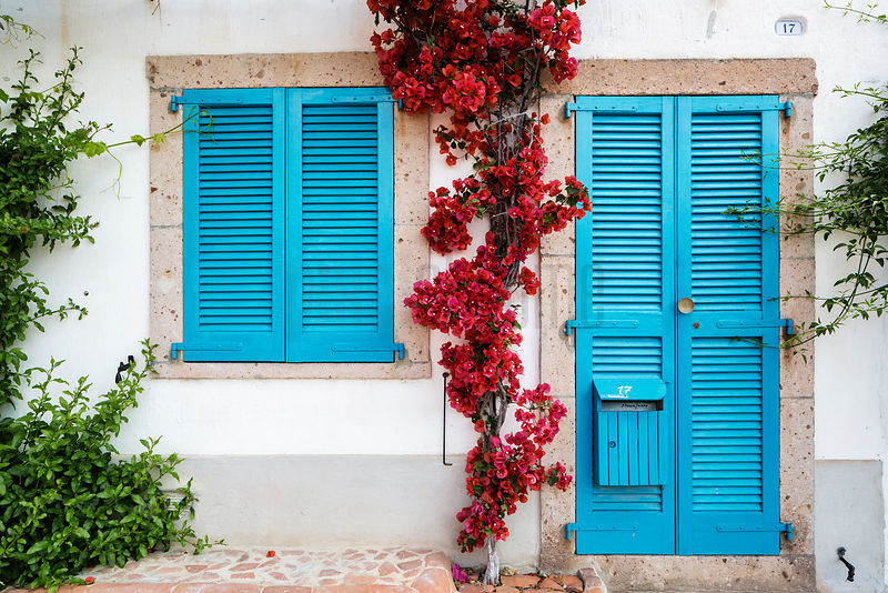 Bougainvillea Growing Between Blu Shutters in the Old Town of Bosa