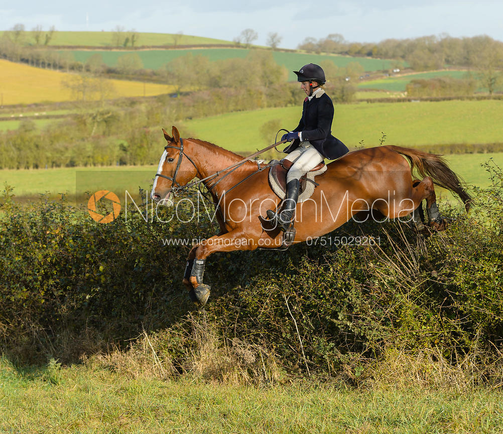 Katie Barber jumping a hedge on David Johnson's