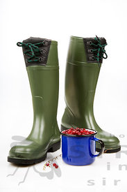 Rubberboots with cranberries