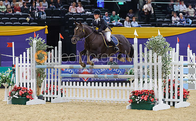 Pony Foxhunter photos