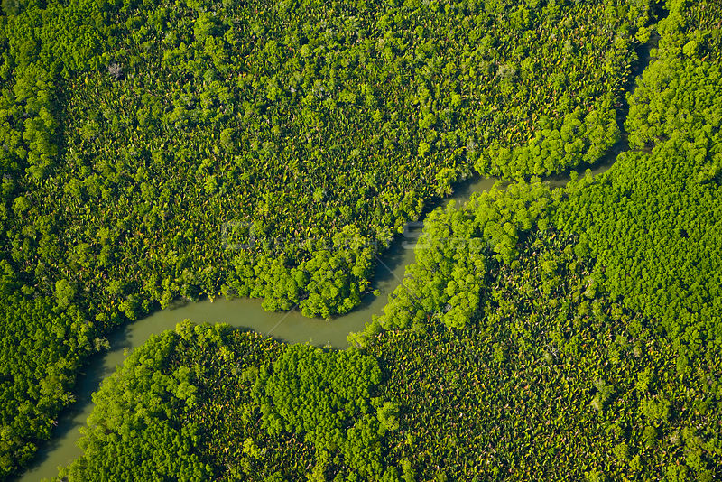 Aerial view of lowland rainforest and tribuataries of the Kinabatangan River, Sabah, Malaysia . 2007