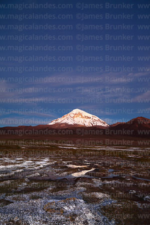 Sajama volcano and bofedales at twilight, Sajama National Park, Bolivia