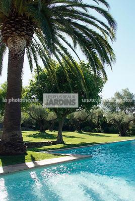 La phototh que les plus beaux jardins coin repos for Conception jardin mediterraneen