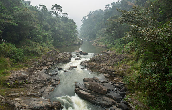 As you enter Ranomafana National Park you cross over the Namorona River