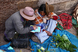 Old Quechua woman looking at book while selling plants used in traditional medicine in market, Cusco, Peru