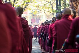 Buddhist monks lined up waiting for lunch, Myanmar