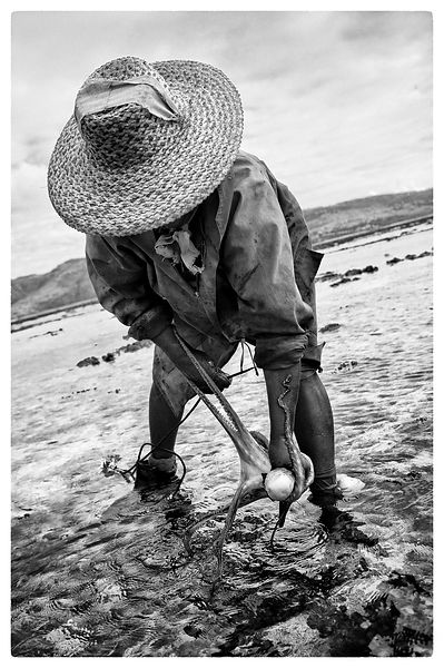Fishermen Rodrigues B&W photos