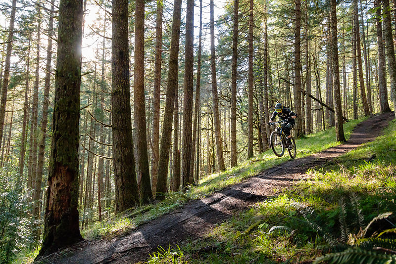 April_28_2017-Bryan_Massogila_MTB-0261