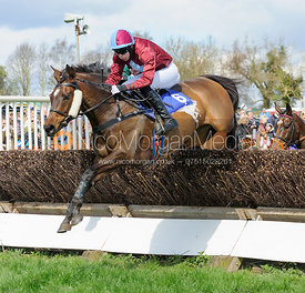 B. Brackenbury and COME ON HARRIET -Mares and Fillies