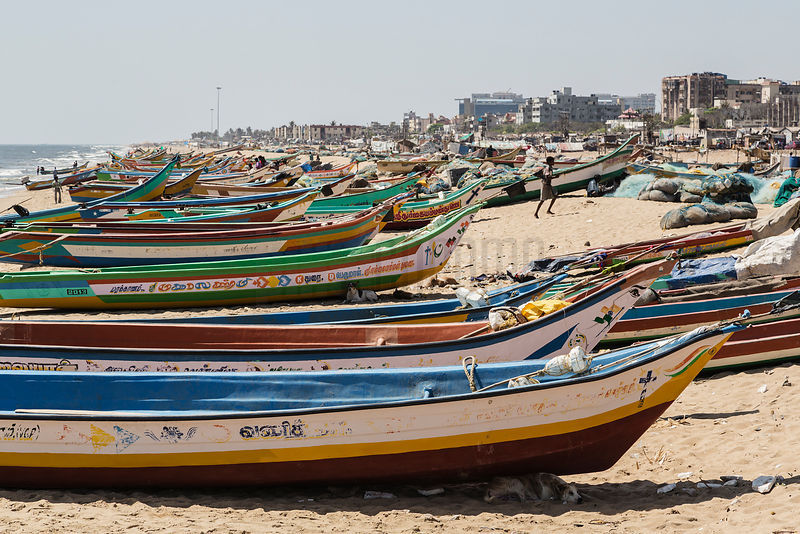 Fishing Boats Lined up on the Beach