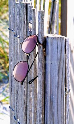 Sunglasses on Beach Fence- Hilton Head, SC