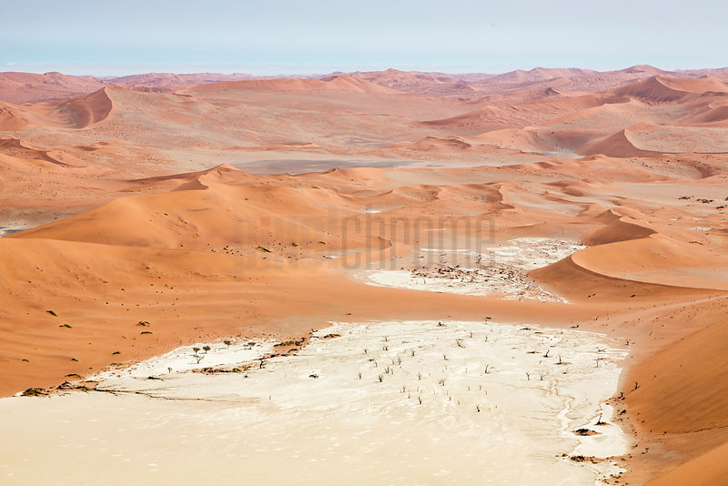 View of Dead Vlei from the Summit of Big Daddy