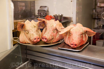 Three Pigs Heads in Butchers Shop Window