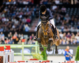 Bordeaux, France, 4.2.2018, Sport, Reitsport, Jumping International de Bordeaux - v. Bild zeigt Edwina TOPS-ALEXANDER (AUS) riding Inca Boy van T Vianahof (5*)...4/02/18, Bordeaux, France, Sport, Equestrian sport Jumping International de Bordeaux - Grand Prix LAND ROVER .Trophée MAIRIE DE BORDEAUX. Image shows Edwina TOPS-ALEXANDER (AUS) riding Inca Boy van T Vianahof (5*).