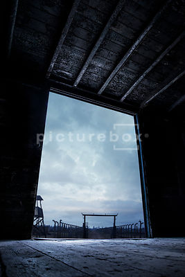 An atmospheric image of the prison camp Birkenau, Auschwitz, Poland, taken from inside an old rail car.