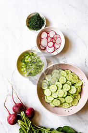Ingredients for a cucumber salad, radishes, salad, scallions