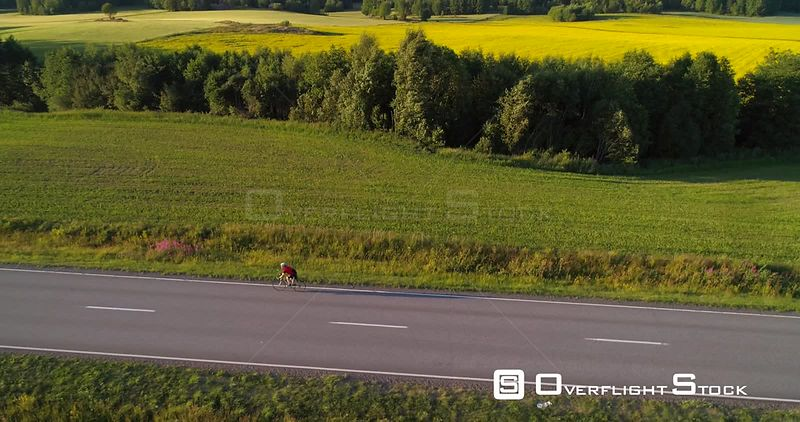 Man biking on the countryside, C4K aerial rising tilt view following a biker driving on a road, between wheat fields, on a sunny summer evening sunset, in Uusimaa, Finland