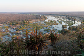 View of the Olifants river from a BBDV2 bungalow at Olifants camp, Kruger National Park , South Africa; Landscape
