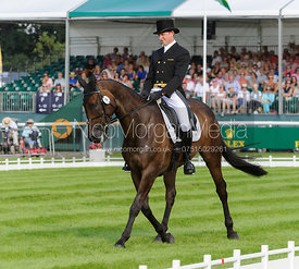 Michael Owen and THE HIGHLAND PRINCE - dressage phase,  Land Rover Burghley Horse Trials, 5th September 2013.