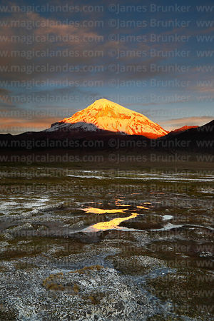 Last light on Sajama volcano at sunset, bofedales in foreground, Sajama National Park, Bolivia
