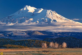 Mount Shasta in Winter #3