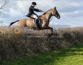 Jumping a hedge behind Ladywood Lodge