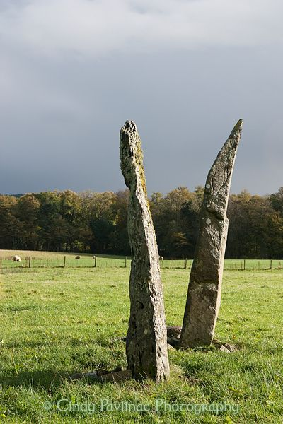 Ballymeanoch Megalithic Stone Row