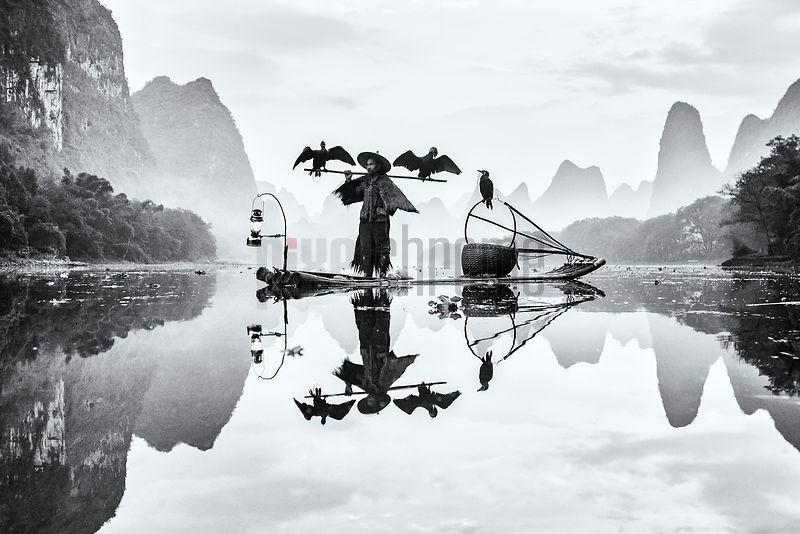 Traditional Fisherman with his Cormorants in the Li River