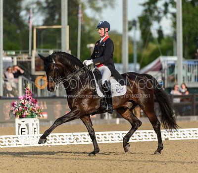 Carl Hester photos