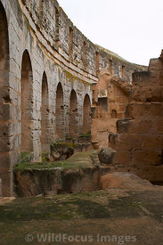 The internal galleries were the staircases allowed the spectators to enter the cavea. El Jem, Tunsia; Portrait
