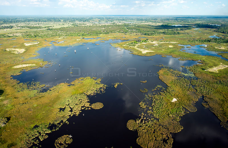 Aerial view of swamp and open pools in the Okavango Delta, UNESCO World Heritage Site, wide angle view taken from a light aircraft, Botswana. January 2018.